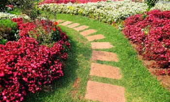 Landscaping in Harrisburg STATE% Landscaping Services in  Harrisburg STATE% Landscapers in  Harrisburg STATE%